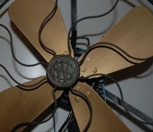 Wasson Fan